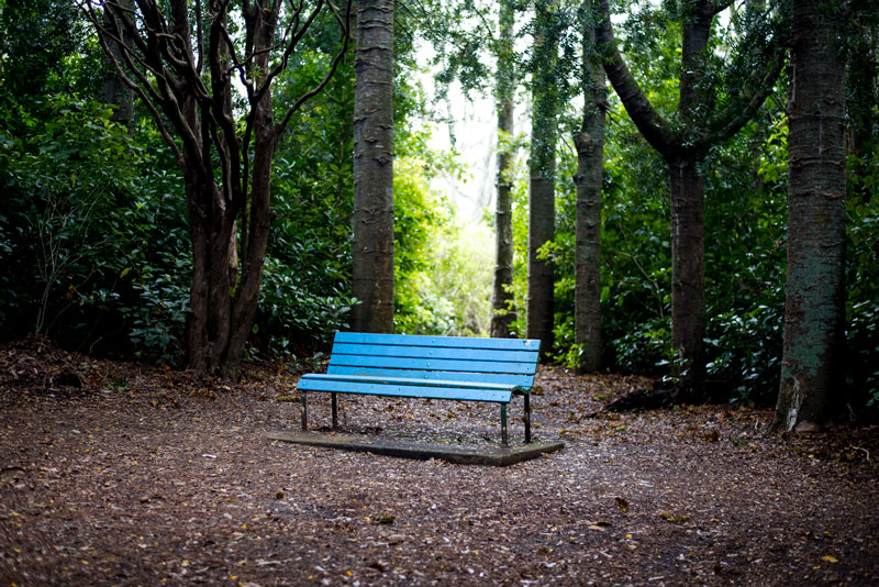 bluechair-800px-50mm 1/40 sec, F1.8 ISO 100
