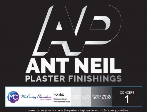 Ant Neil Plaster Finishings Logo Design